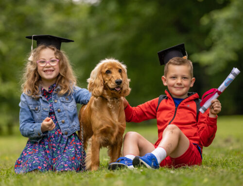 Kerry's new Petmania Puppy Club is Class Act